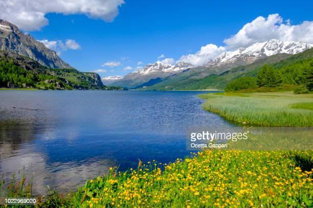 Lake Sils, Upper Engadine valley (Graubünden, Switzerland)