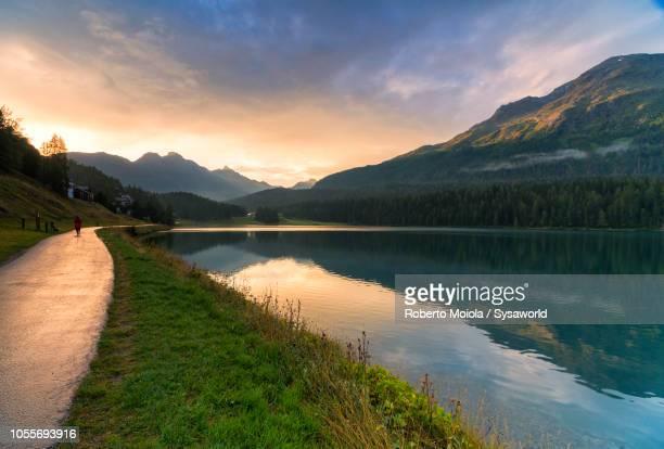 lake st moritz, engadine, switzerland - riva del lago foto e immagini stock