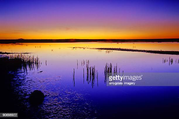 lake sunset landscape abstract - roswell stock pictures, royalty-free photos & images