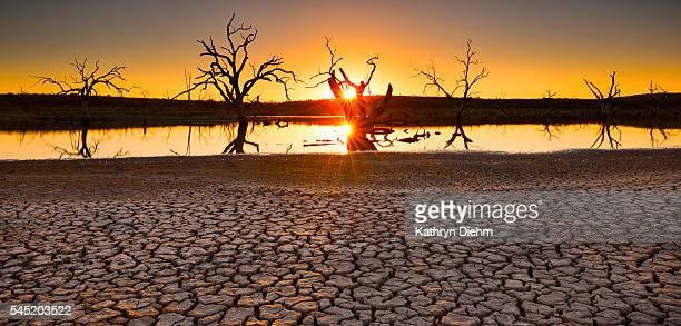 lake sunset - drought stock pictures, royalty-free photos & images