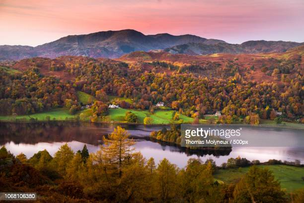 lake surrounded by autumn forest - lake district autumn stock pictures, royalty-free photos & images