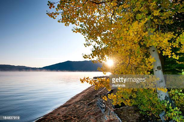 lake tahoe fall color - lake tahoe stock photos and pictures