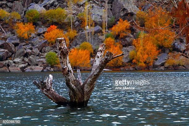 lake upper kachura in autumn - gilgit baltistan stock photos and pictures