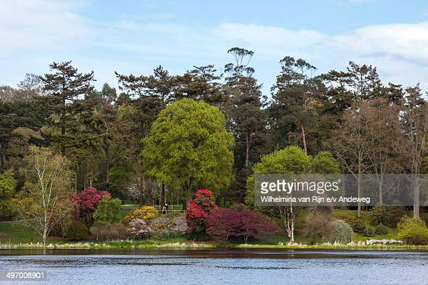 CONTENT] Lake view and spring colors in Mount Stewart Garden Mount Stewart is an 18thcentury house and garden in County Down Northern Ireland owned...