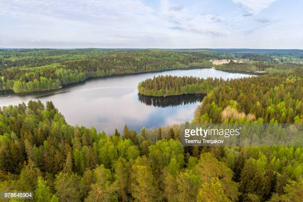 Lake View with Forest, Finland