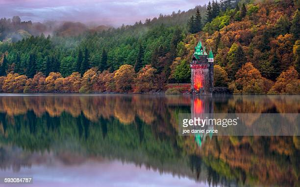 lake vyrnwy, powys, wales, uk - lake vyrnwy stock pictures, royalty-free photos & images