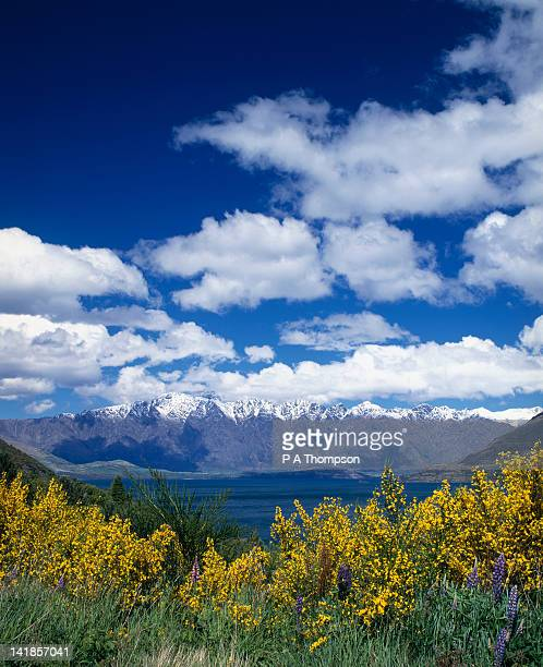 Lake Wakatipu and the Remarkables, Queenstown, Otago, South Island, New Zealand