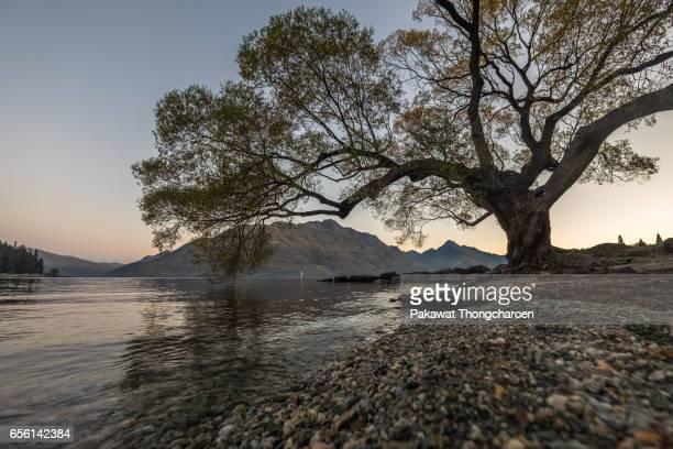Lake Wakatipu, Queenstown, Otago, South Island, New Zealand