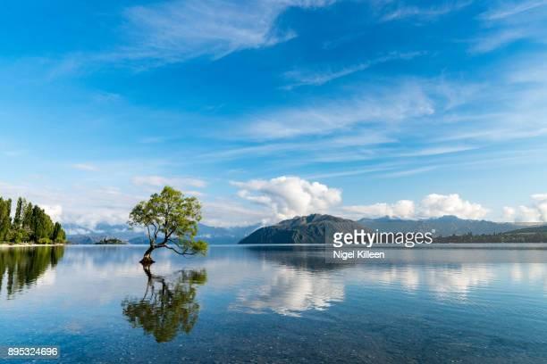 lake wanaka, new zealand - wanaka - fotografias e filmes do acervo