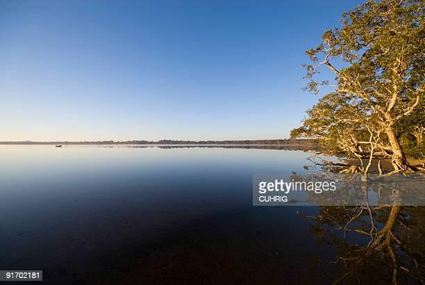 Lake Weyba Sunshine Coast