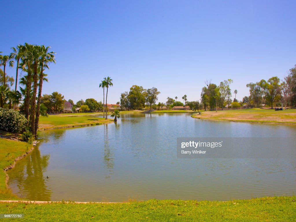 Lake with ducks surrounded by grass and trees in Phoenix : Stock-Foto