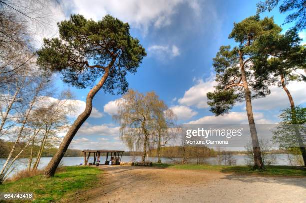 lake wolfssee in duisburg, germany - ruhige szene stock pictures, royalty-free photos & images