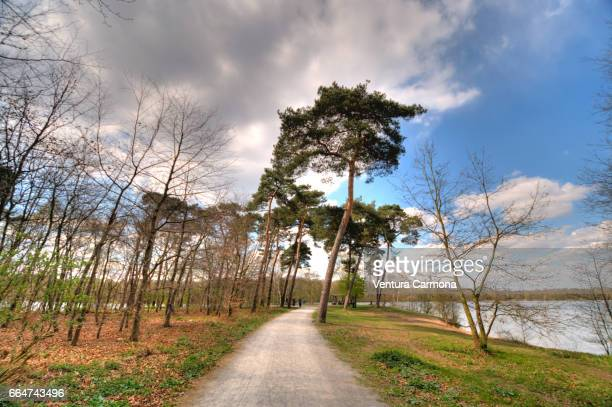 lake wolfssee in duisburg, germany - beschaulichkeit stock pictures, royalty-free photos & images
