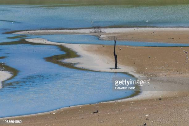 lakebed - lake bed stock pictures, royalty-free photos & images