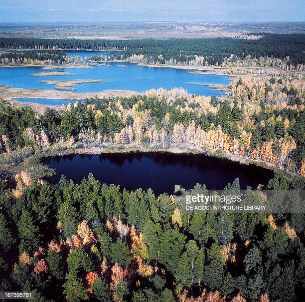 Lakes and marshes in the Novosibirsk Region Russia