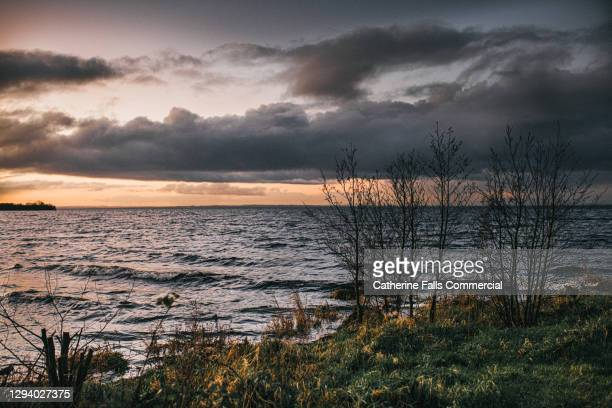 lakeshore at dusk - modern rock stock pictures, royalty-free photos & images