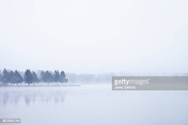 Lakeshore in fog