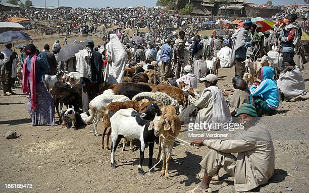 Lalibela market is only open on Saturday. Farmers, herders and tribespeople walk for miles in each direction to stock up their necessities for the...