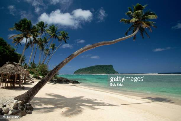 lalomanu beach in western samoa - samoa stock pictures, royalty-free photos & images