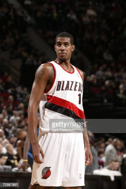 LaMarcus Aldridge of the Portland Trail Blazers is on the court during the game against the Dallas Mavericks on November 12, 2006 at the Rose Garden...
