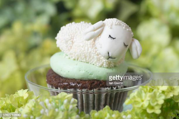lamb cupcake - ian gwinn stock pictures, royalty-free photos & images