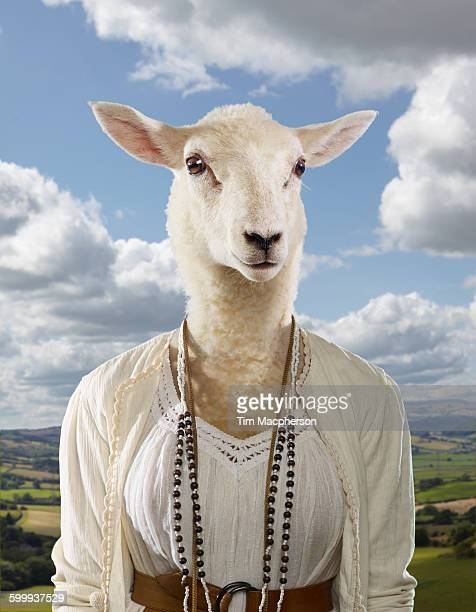 A lamb dessed as a bohemian