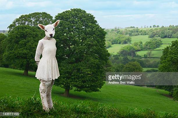 lamb poses in a white dress against a landscape
