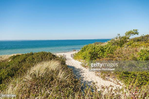 lambert's cove beach - marthas vineyard stock pictures, royalty-free photos & images