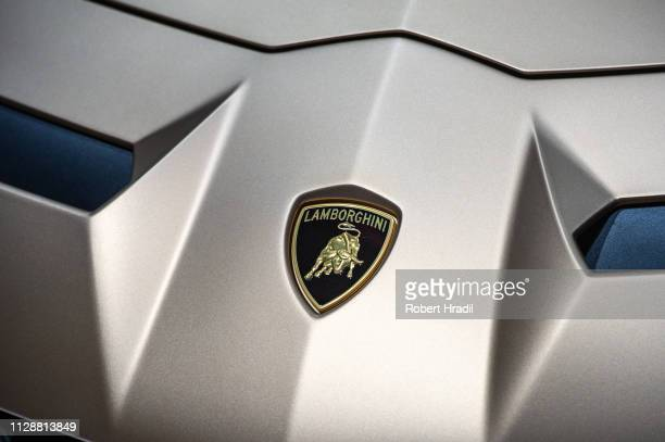 Lamborghini Aventador SVJ Roadster nose with logo is displayed during the second press day at the 89th Geneva International Motor Show on March 5...