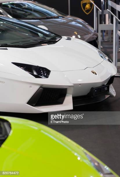 lamborghini - lamborghini stock pictures, royalty-free photos & images