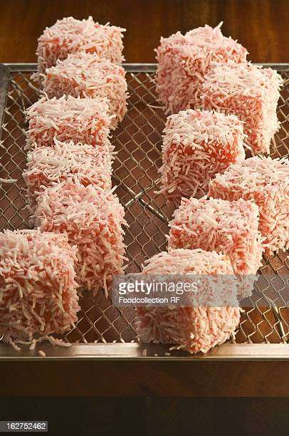 Lamingtons on wire rack
