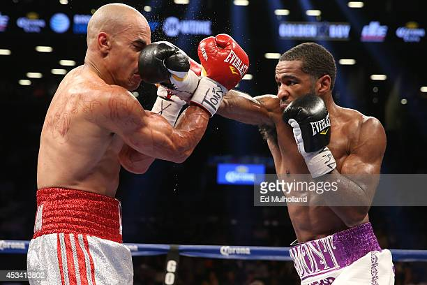 Lamont Peterson lands a right hand to the head of Edgar Santana during their IBF junior welterweight championship fight at the Barclays Center on...