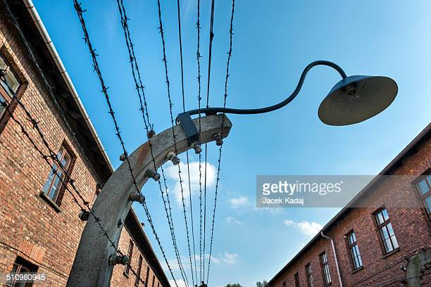 Lamp on a barbed wire encloses the Auschwitz IIBirkenau extermination camp in Brzezinka Poland Auschwitz IIBirkenau was the extermination camp...