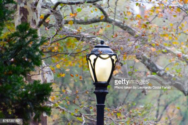 Lamp post at Central Park
