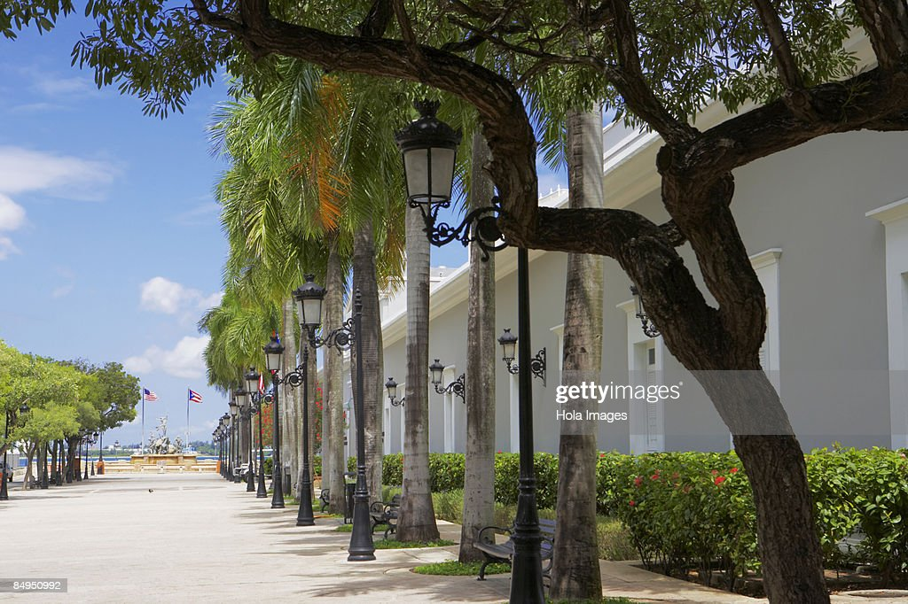 Lampposts And Trees In Front Of A Building, La Princesa, Old San Juan,