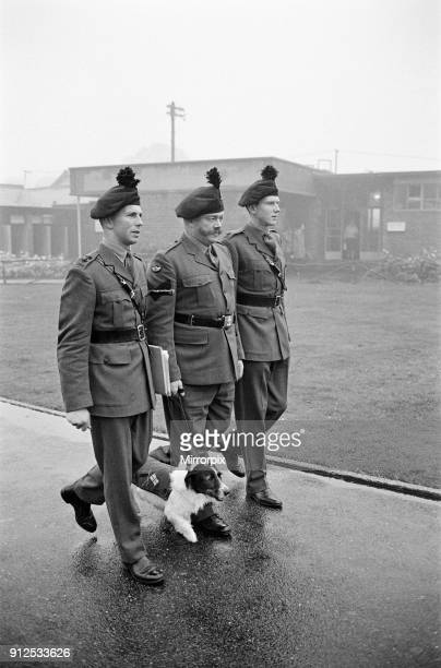 Lance corporal 'Paddy' was promoted Sgt Paddy when he was collected from quarantine at Hackbridge Kennels in Surrey Paddy marches off with Lt DP...