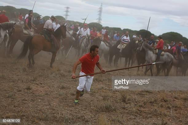 Lancer Alvaro Martin 28 runs before spear the bull named quotElegidoquot to death during quotel toro de la vega tournamentquot at Tordesillas...