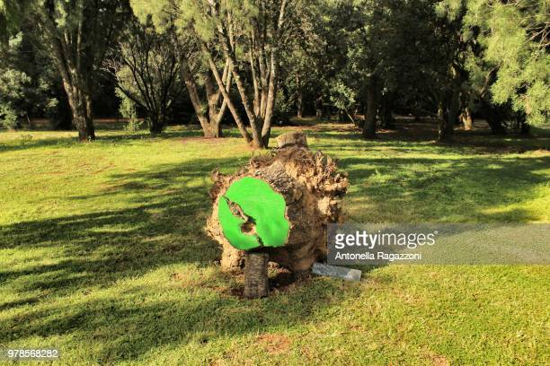 land art - antonella stock photos and pictures