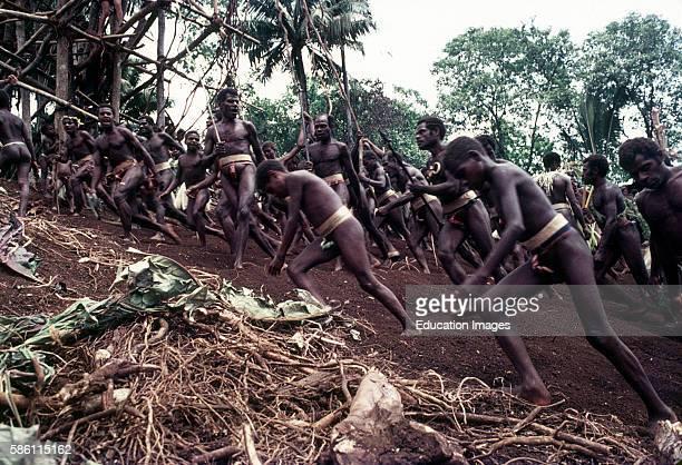 Land dive Naghol Ceremony Longwaran tribe small Nambus tribe to endure good yam harvest Raga Island Vanuatu New Hebrides 1971 Diver to prove bravery...