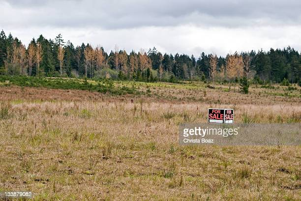 land for sale - land stock pictures, royalty-free photos & images