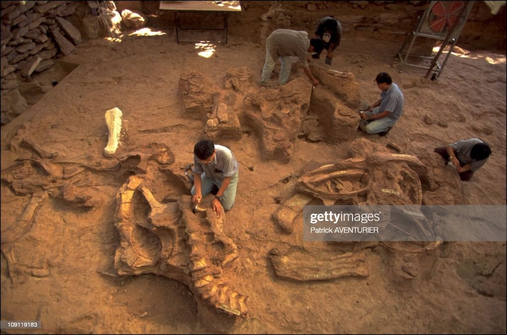 Land Of Dinosaurs On January 12Th, 2000, Thailand. : News Photo