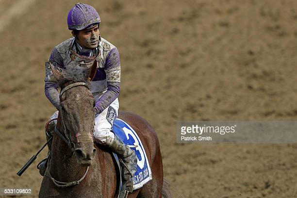 Land Over Sea ridden by Mario Gutierrez looks on after losing in The 92nd Running of BlackEyed Susan Stakes at Pimlico Race Course on on May 20 2016...