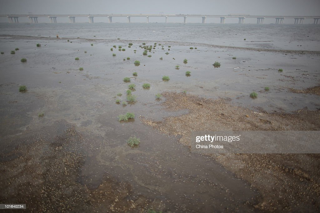 A land reclamation site is seen at the Tanggu Coastal Economic Zone on June 5, 2010 in Tanggu of Tianjin Municipality, China. From 2002 to 2009, China reclaimed approximate 185,250 acres of land from sea, mainly for construction of industries, tourism and ports, according to the statistics released by the State Oceanic Administration (SOA).