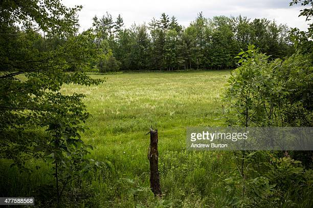 Land that has been searched by police is seen near Clinton Correctional Facility on June 18, 2015 outside Dannemora, New York. Two convicted...