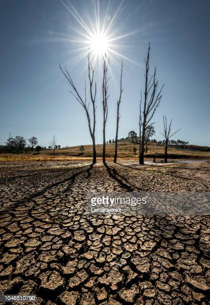 land with dry and cracked ground. desert,global warming background - drought stock pictures, royalty-free photos & images
