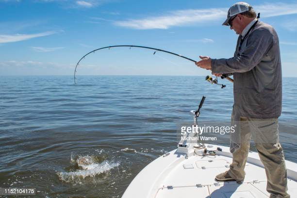 landing a large fish on gulf of mexico - fishing industry stock pictures, royalty-free photos & images