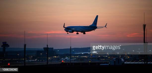flugzeug landung von tui fly airline am flughafen frankfurt - tui ag stock-fotos und bilder
