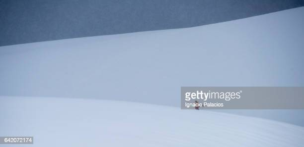 Landing in Antarctica peninsula
