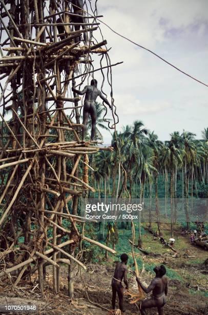 landiving in pentecost (vanuatu) - pinksteren stockfoto's en -beelden