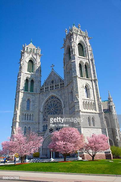 landmark newark cathedral in spring - st. patricks cathedral manhattan stock photos and pictures